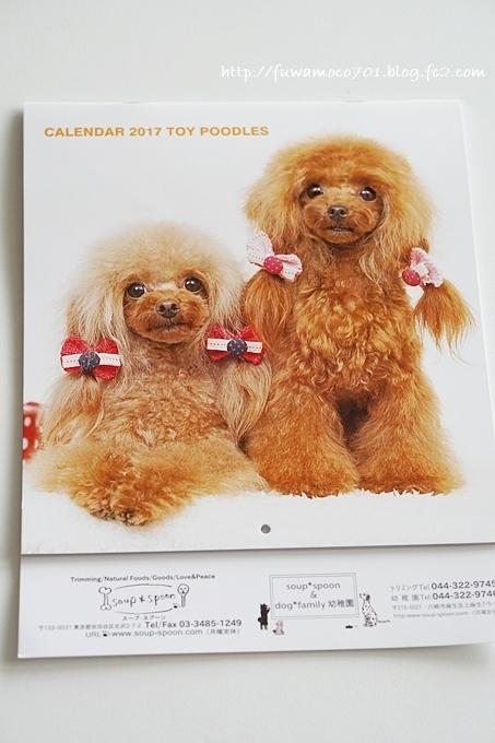 チビプードルモコの毎日☆モコみるく カレンダー
