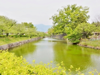 50 松本城 (5)