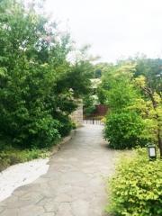 溝口温泉 喜楽里 (2)