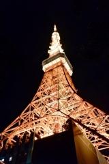 東京ワンピースタワー (41)