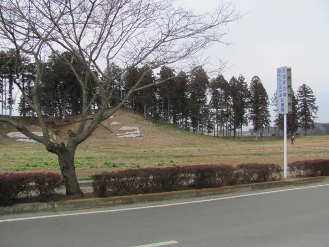 琵琶塚古墳2016.03.05N