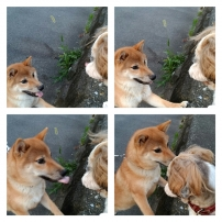 pixlr(7).jpg
