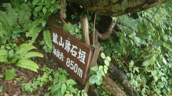 sP6260060.jpg