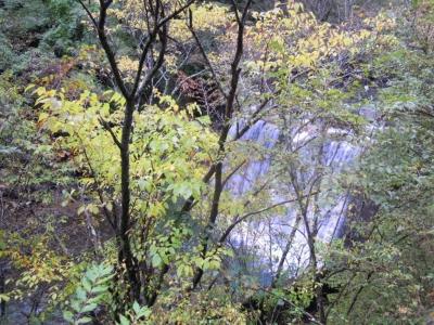 伝道までの林道から161101