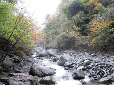 早戸川河原4