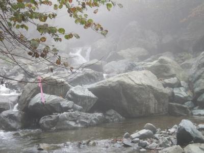 早戸川河原ー5