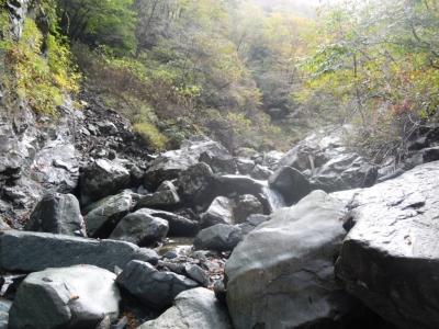 早戸川河原ー8