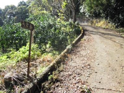 矢倉岳ハイキングコース161104