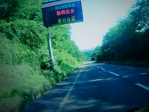 DSCN1653.jpg