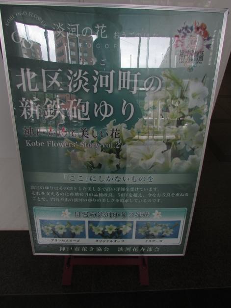 IMG_2897.jpg
