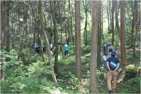 木育交流植物・散策