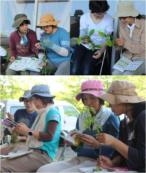 木育交流植物・実践1