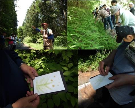 JT・森林散策2