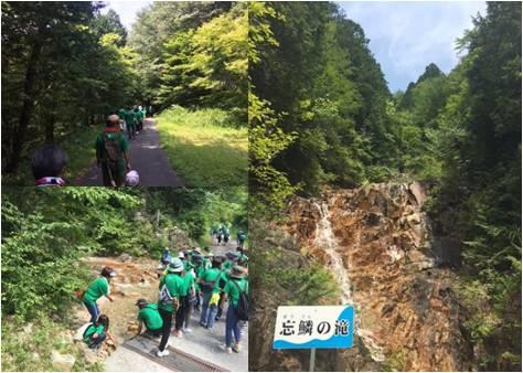 マルヤマ木材・忘鱗の滝