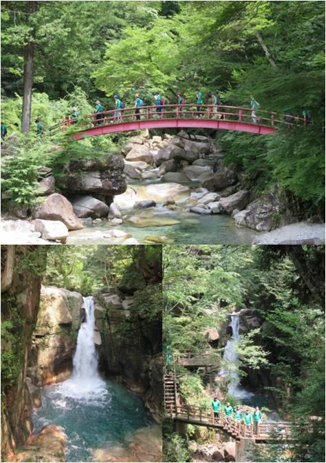 マルヤマ木材・竜神の滝