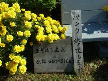 20161024006.jpg