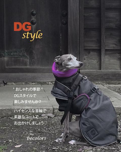 dg-style--2.jpg