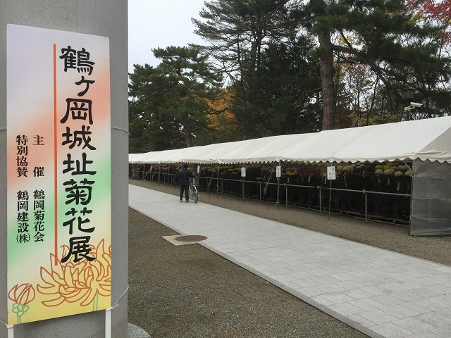 鶴岡公園紅葉2016 7