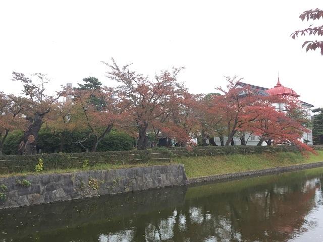鶴岡公園紅葉2016 1
