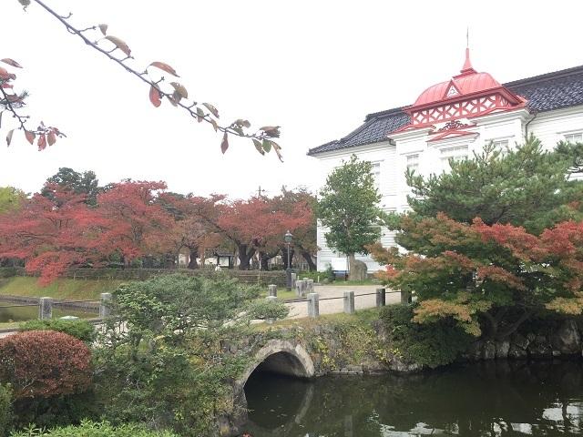 鶴岡公園紅葉2016 2