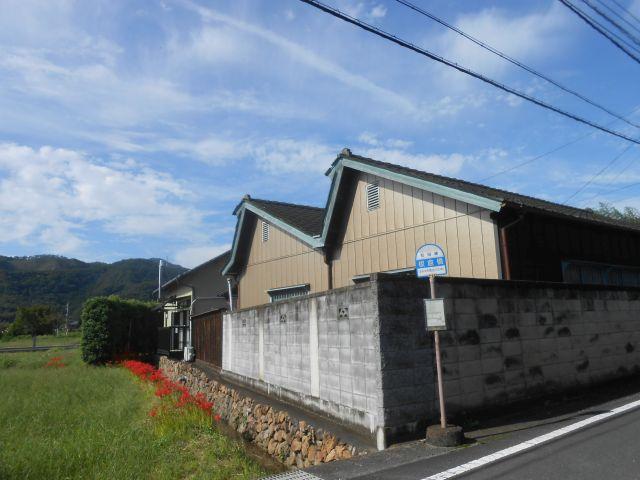 nokogiri_tamago_1.jpg