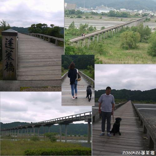 20160526 DSC_1357蓬莱橋1