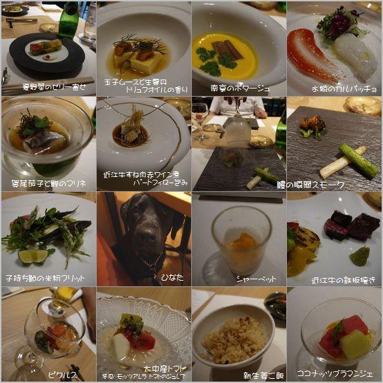 20160615 P1150648 Biwa Dog-3