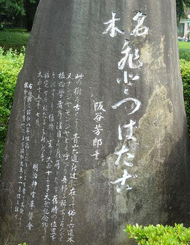 ヒトツバタゴの碑