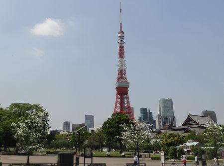東京タワーの見える公園で