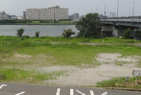 新小松川橋付近