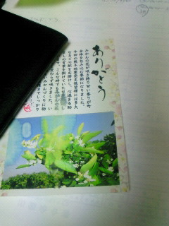 NEC_3641.jpg