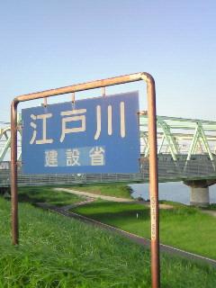 NEC_3789.jpg