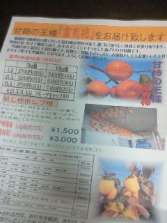 NEC_3950.jpg