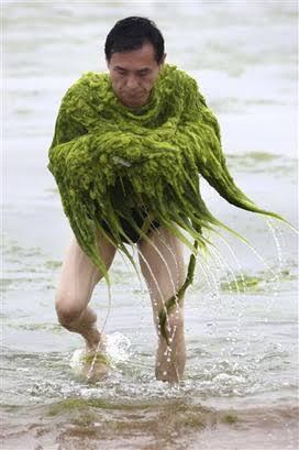 喪服でなく藻服で来た