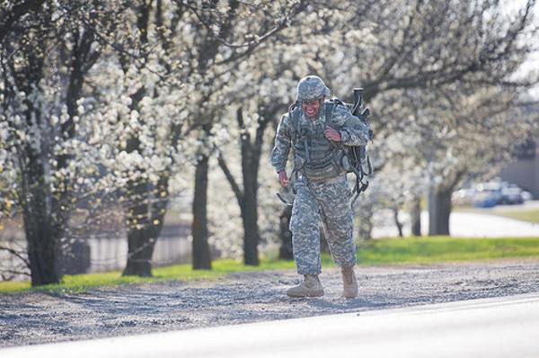 最前線でなく桜前線に派遣された
