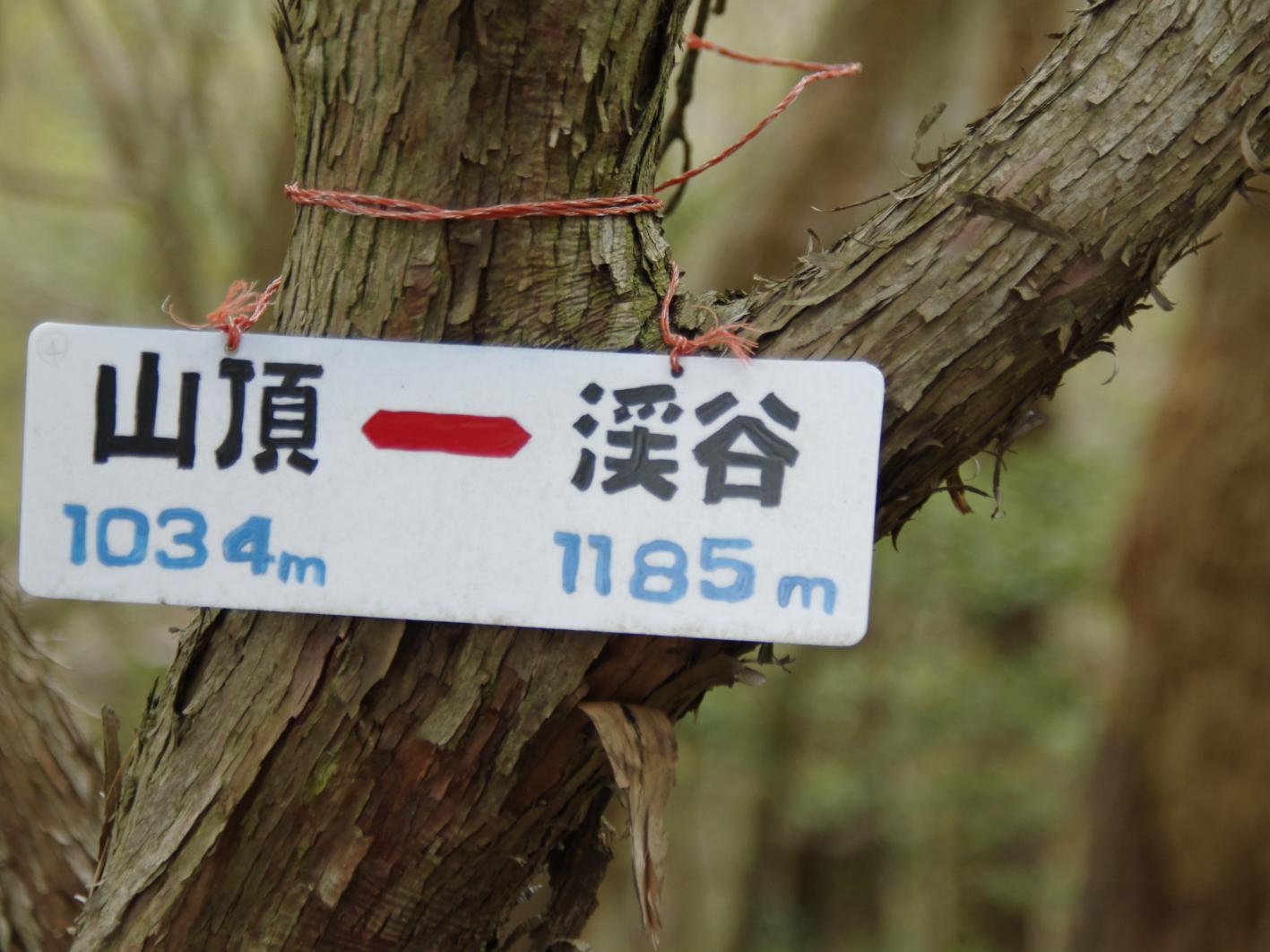_GOR0352b.jpg