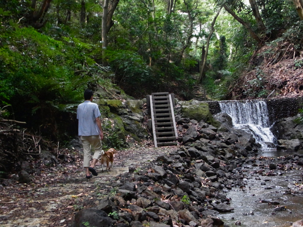 20160817-9滝もあります