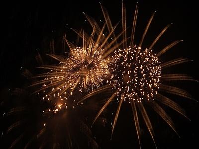 多摩川花火大会「ひまわり」その2