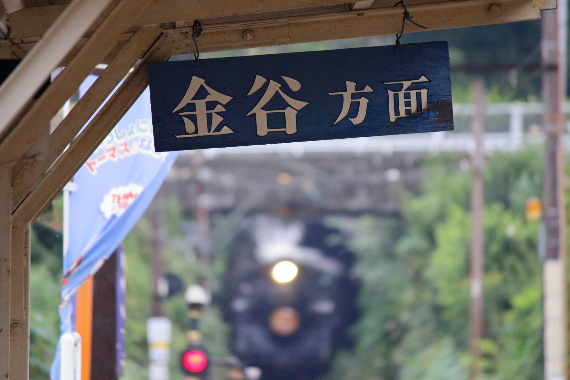 2016ooigawa95.jpg