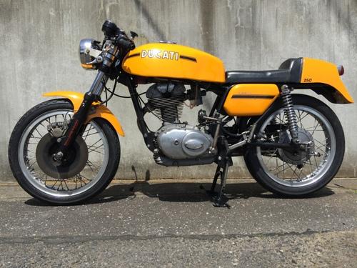 yellow350B.jpg