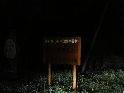 キトウシ野営場 011