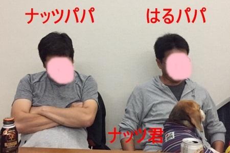 IMG_2916.jpg