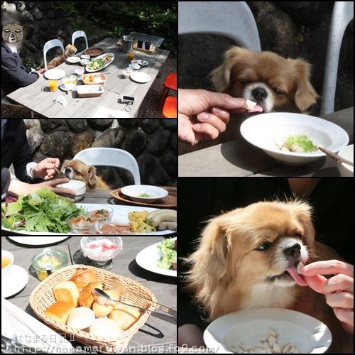 四季の蔵朝食