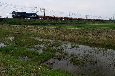 s-P1030366.jpg