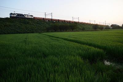 s-P1040523.jpg