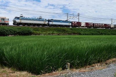 s-P1040567.jpg