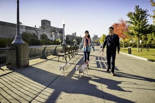 Tetsuhiro-Sachiko-Dogs-in-Montreal (500x333)