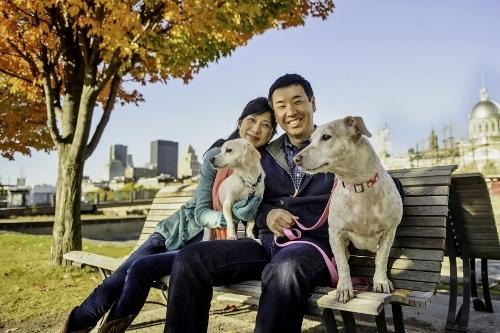 Tetsuhiro-Sachiko-Dogs-in-Montreal_11 (500x333)