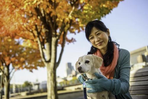 Tetsuhiro-Sachiko-Dogs-in-Montreal_13 (500x333)