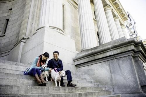 Tetsuhiro-Sachiko-Dogs-in-Montreal_18 (500x333)